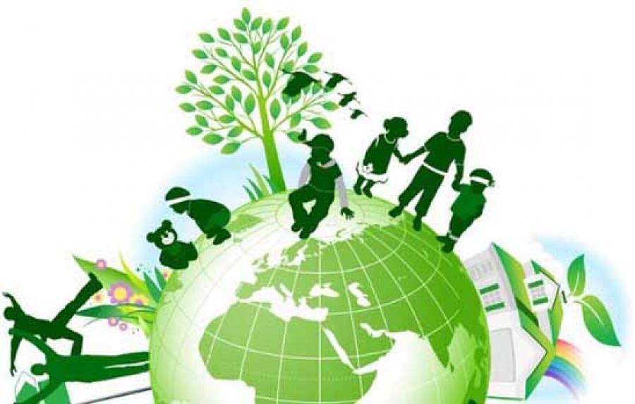 مركز البيئة والموارد الطبيعية
