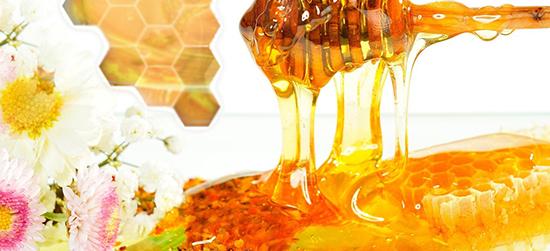 مركز أبحاث العسل